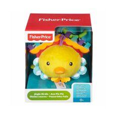 Fisher-Price-Ave-pio-pio-DFP96-Mattel-1-8727