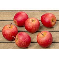 Conjunto-de-manzanas-decorativas-6pz-Boltze-1-9062
