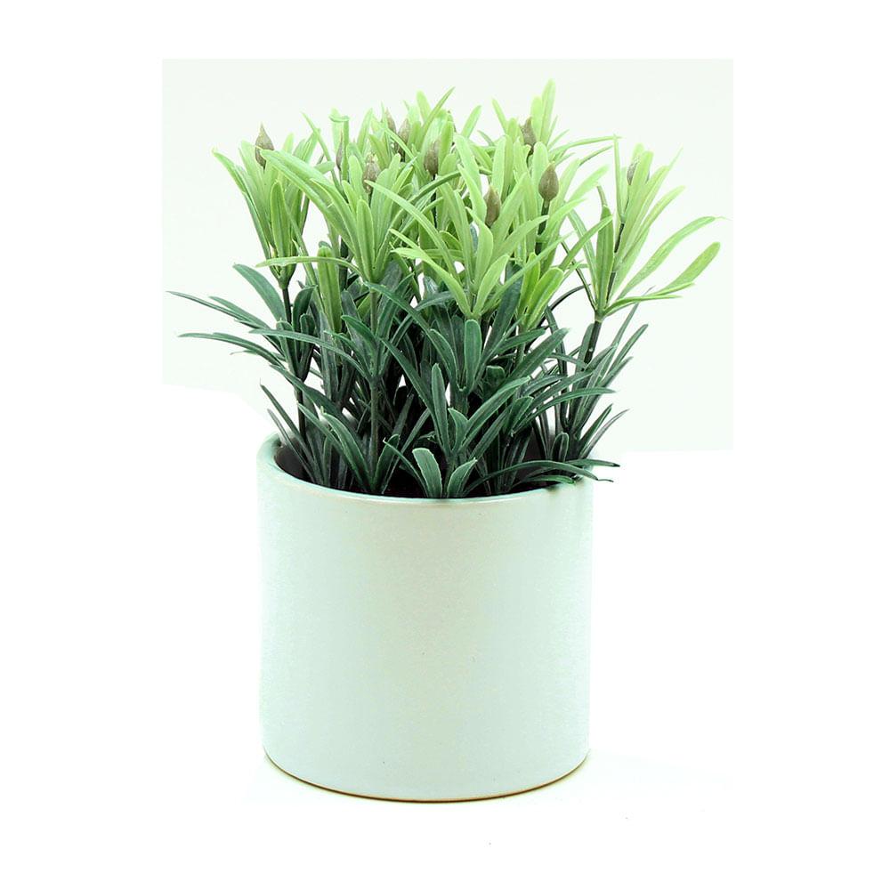 🥇Maceta Para Flores Forma De Concha En Cerámica Blanca Crp