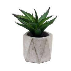 Aloe-en-maceta-blanca--Aloe-en-maceta-blanca-1-10063