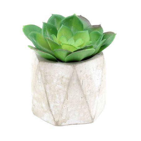 Capullo-flor-de-loto-en-maceta-1-10058