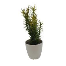 Cactus-en-maceta-de-melamina-29-cm--Cactus-en-maceta-de-melamina-29-cm-1-13936