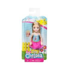 Barbie-Club-Chelsea-SURTD-Mattel-1-14720