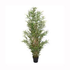 Planta-de-bambu-9-ramas--Planta-de-bambu-9-ramas-1-15373