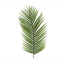 Hoja-de-helecho-color-verde--Hoja-de-helecho-color-verde-1-15694