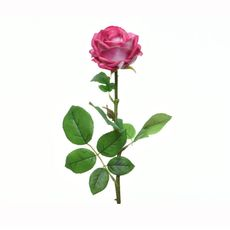 Rosa-en-tallo-color-fucsia-66-Cm-1-17261