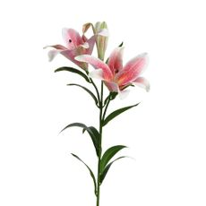 Flor-LILLY-en-tallo-15x27x90cm-color-Rosada-1-23352