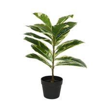 Planta-de-goma-artificial-en-maceta-1-28466